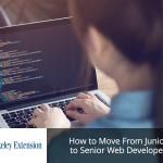 Senior Web Developer